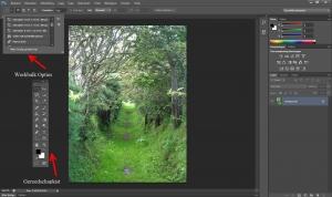 Photoshop gereedschapkist en werkbalkopties