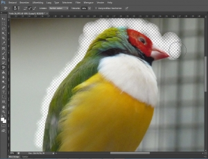 photoshop achtergrond gummetje