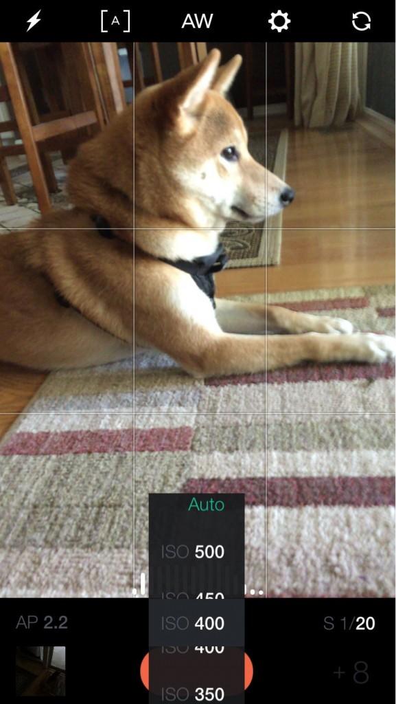 Mooie foto's maken met uw iPhone